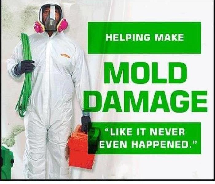Mold Remediation Poorly Ventilated Attics Encourage Mold Growth