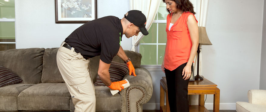 Champaign, IL carpet upholstery cleaning